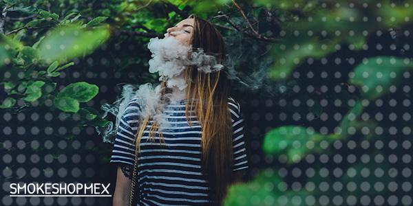 Los vaporizadores como una alternativa para cuidar el medioambiente